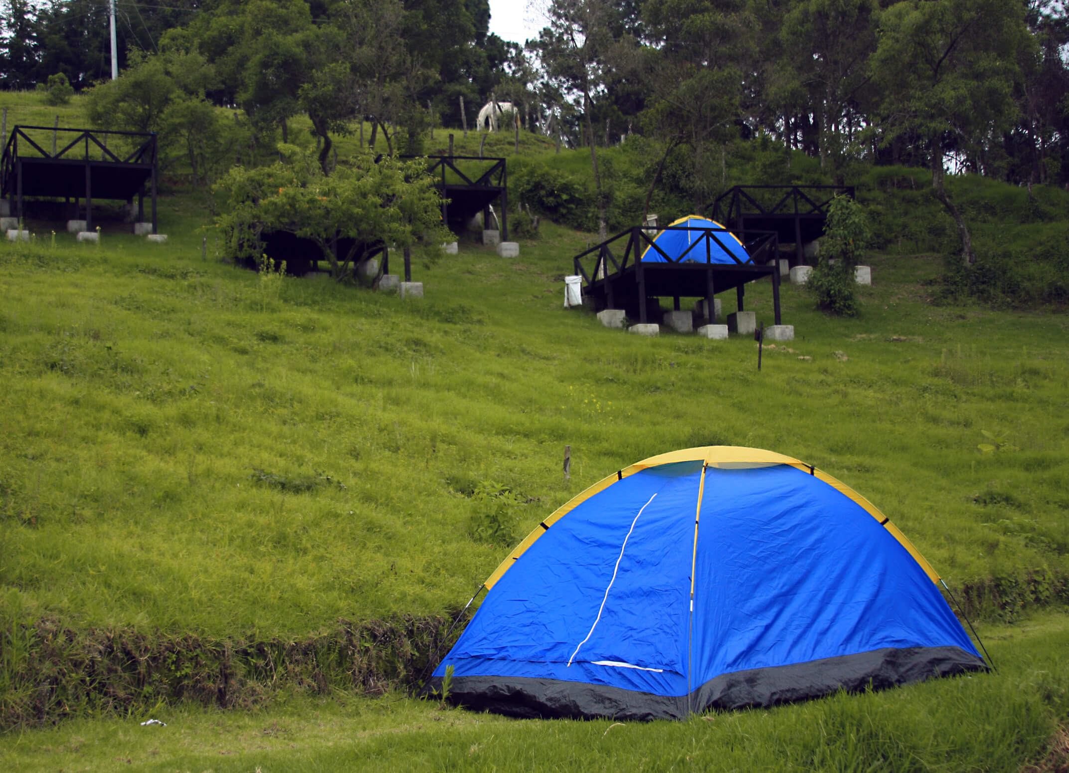 Allaarriba campingnatural interna 02